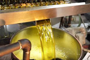 遠賀逸品菜種油とは?のイメージ